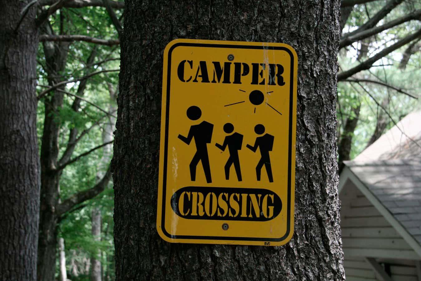 camp-chicos-header